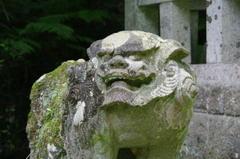 Akomainutyufuku04