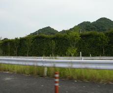 Atagawa02