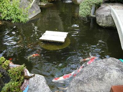 Atagawa04