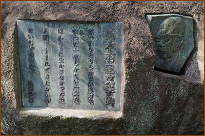 Ayamamoto01