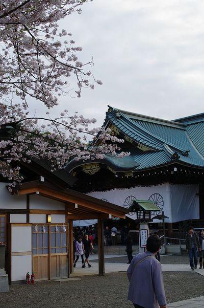 Ayasukuni02