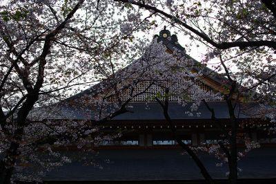 Ayasukuni04_2