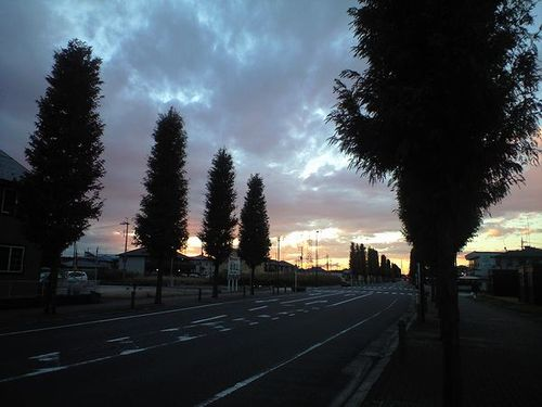 Akaerimichi01