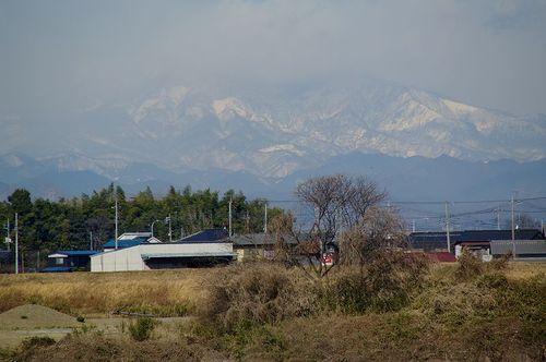 Aomoigawa01