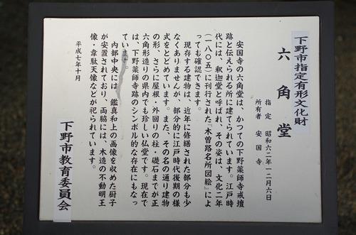 Ayakusiji09