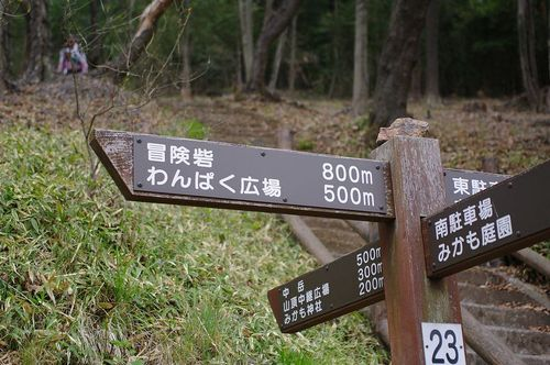 Akanzakura02