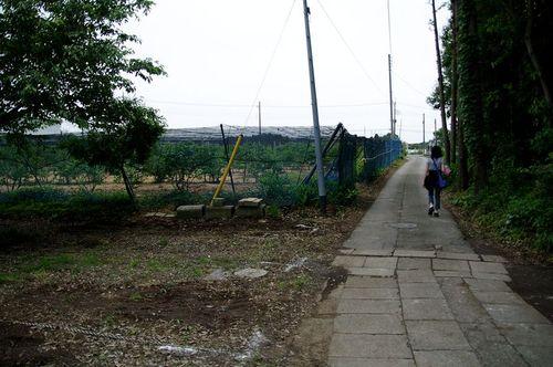 Agouno04