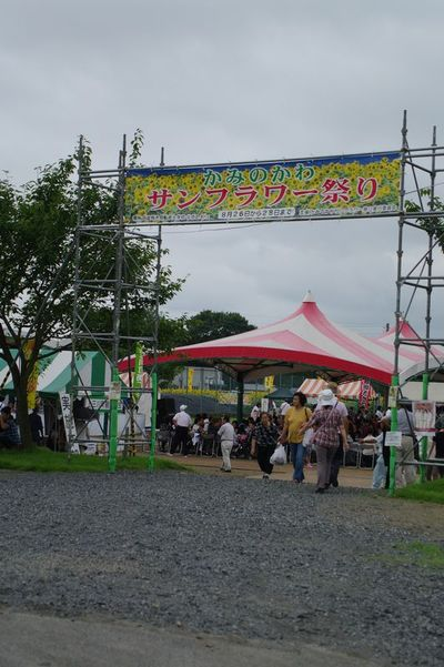 Ahimawari04