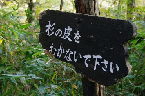 Aowakare02