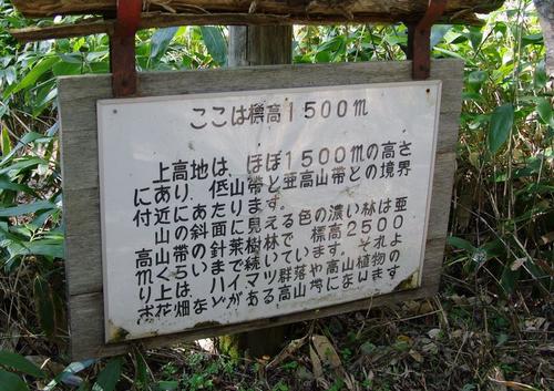 Aazusagawa02