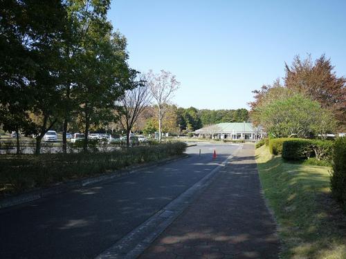 Atyuushajyoukara04