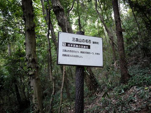 Amikamo08