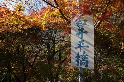 Aooasikeikoku04