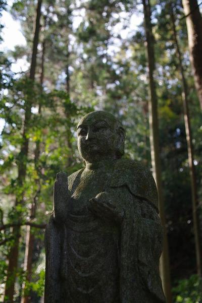 Aojizousan01