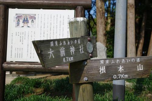 Aojizousan03