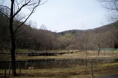 Amikamoyamahigasiguti04