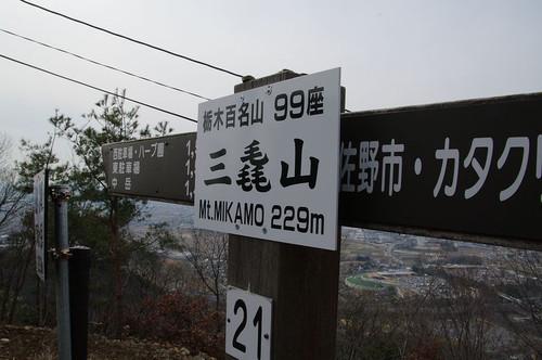 Amikamoyamasantyou02