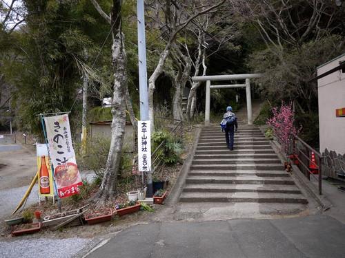 Aoohirasan02