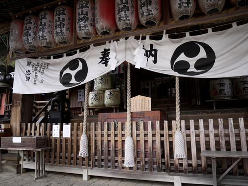 Aoohirasan03