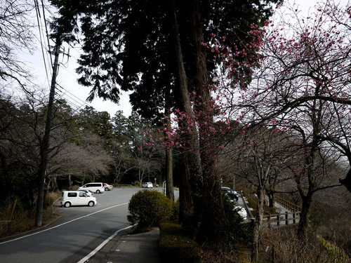 Akokugakuin04