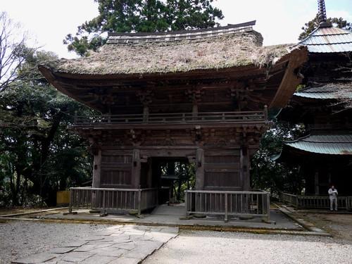Asaimyoujihondou01