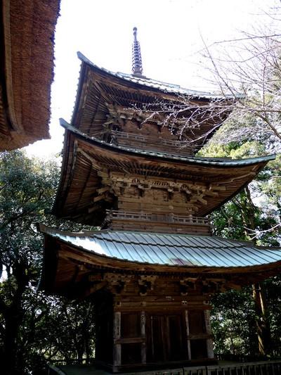Asaimyoujitoowakare02