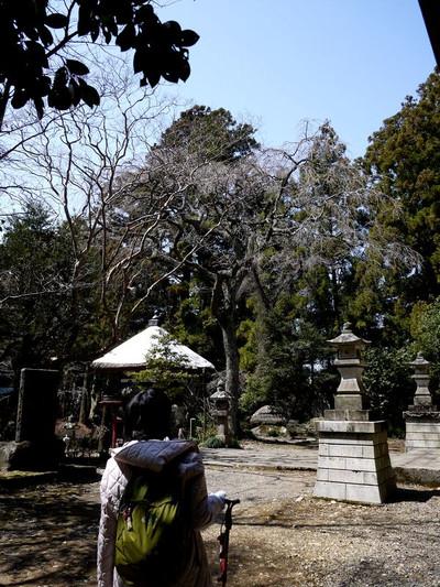 Asaimyuojitoowakare02