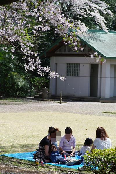 Asiroyamakouen04