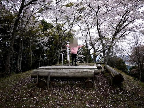Asantyounosakura04_2