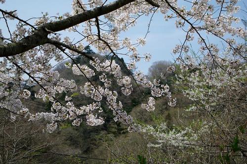 Akinomatagawa04