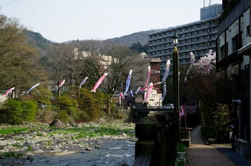 Asiobarahoukigawa01