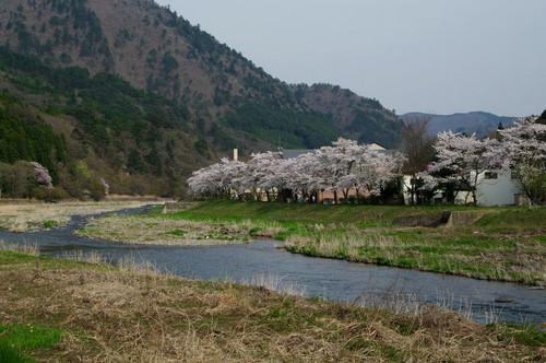 Asiobarahoukigawa04