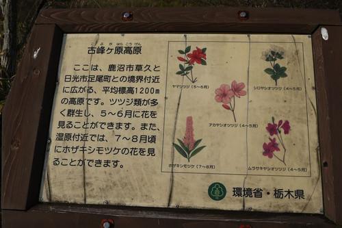 Atougokumituba03