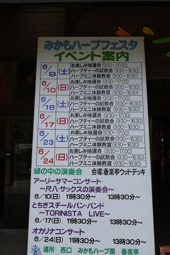 Amikamohabu01