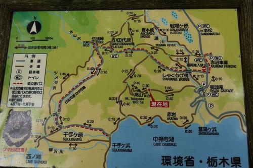 Ashakunage03