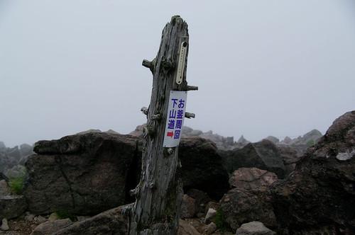 Aohirugohan01