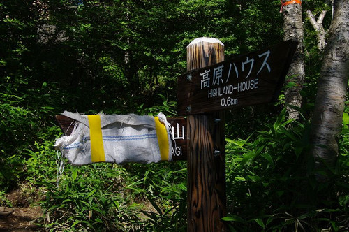 Amitimayoi01
