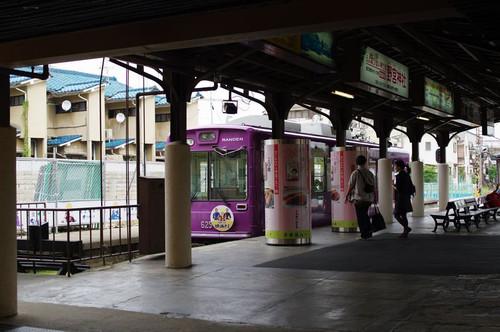 Asiroihiganbana05