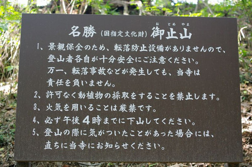 Aotomeyama04