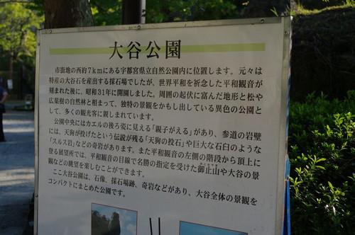 Aooyakouen01