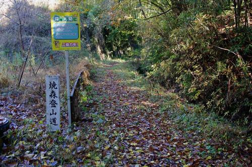 Asimokonuki03