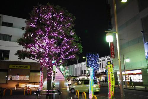 Aoyamaekimaeirumi01