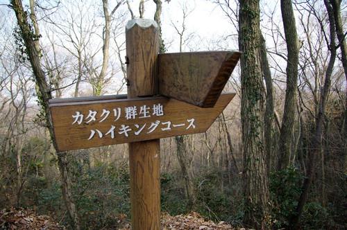 Amikamowogezan03