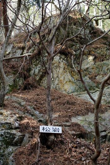 Amatuiwa01
