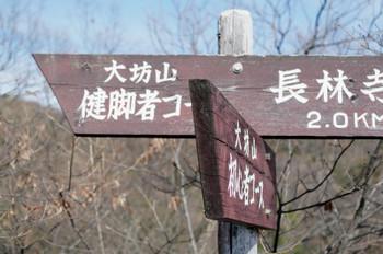 Aawagiyama05