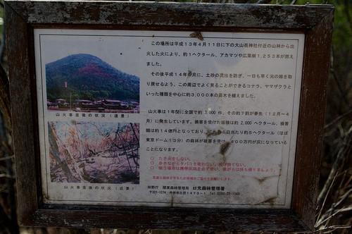 Aooyamajinjya04