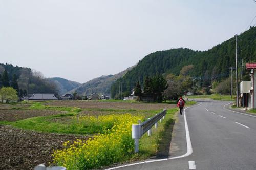 Aoomurasaki04
