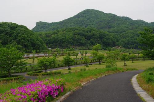 Arindouaruki04