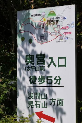 Aokumiya01