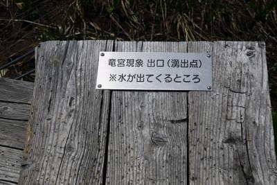 Aizumi01